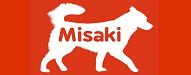 the mis adventures of misaki