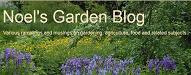 noels garden blog