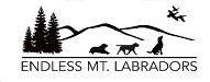 Endless mountain Labradors