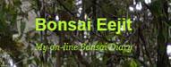 bonsaieejit