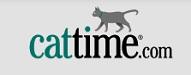 Top Cat Blogs 2020 | Cattime